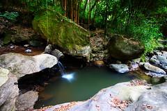 Parque natural Atitlan 3 (TheMiner_) Tags: guatemala guate iloveguatemala agua caídasdeagua sedas canon canont5i sigma1020mm selva bosque foresta viajero chileno nd ndfilter flora canonlovers