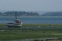 IMAGES DU MORBIHAN SUD. (jmsatto) Tags: morbihansud golfedumorbihan mer bateau iles