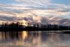 RiverDec2016-8059.jpg (labrossephotography) Tags: fraserriver vancouver bc britishcolumbia sunset clouds foreshore swirl reflection landscape waterscape trees silhouette