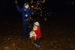 leaves (Wolfgang Binder) Tags: kids leaves park throwing nikon d7000 zeiss distagon distagont2825
