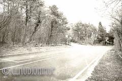 "Spoon River Anthology Godwin James (claudionimuc) Tags: spoonriver edgarleemasters america selenio seppia crema poesia morti fernandapivano pivano antologia de andre"" pavesi 2016 art rural"