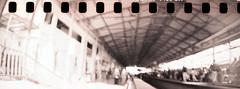 la station (vinskatania) Tags: lomographysprocketrocket lomosprocketrocket sprocketrocket believeinfilm staybrokeshootfilm filmphotography lomography sephia t400cn