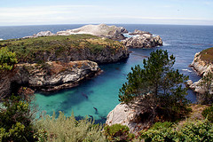 013-point lobos- (danvartanian) Tags: california pointlobos nature landscape