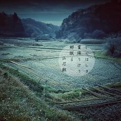 ()  #photoikku #haiku #jhaiku #winter # #snapseed # #photohaiku #japan #poetry # (Atsushi Boulder) Tags: instagramapp square squareformat iphoneography uploaded:by=instagram    winter photoikku snapseed haiku verse poem poetry photo photohaiku