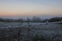 Frost (christy.odonnell069) Tags: ireland irish weather frost winter is here eire cold