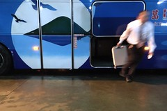#takeaway #thelastone #baggage (tvj918918) Tags: takeaway thelastone baggage