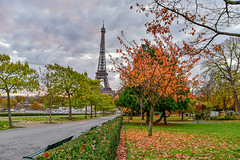 Fall at the Eiffel Tower (julialarrigue) Tags: always eiffel tree sky