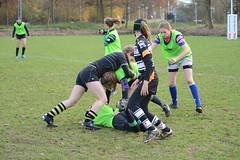 DSC_8854 (mbreevoort) Tags: rfchaarlem rugby rcthedukes brcbreda dioklrc thepickwickplayersdrc hookers goudarfc