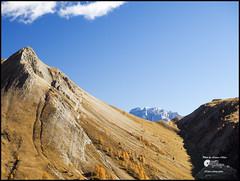 . (Enrico Moser) Tags: trentino montagna autunno alps alpine dolomiti landscape larice roccia rocks olympus