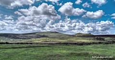 A Moorland View, Haytor, Dartmoor, Devon
