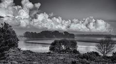 A view from Arne. (Greatdog) Tags: dorset arne cloudsstormssunsetssunrises blackandwhite landscape