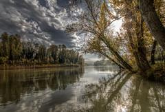 riflessioni autunnali (Nicola Prencipe) Tags: colors color hdr autunno reno casalecchiodireno river emiliaromagna bologna landscape land parcodellachiusa sky reflection
