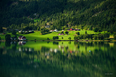 Green farms (alexring) Tags: d750 nikon alexring morning view lake reflection mirror mountain flo stryn norway sognogfjordane oppstrynsvatnet water