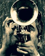 Portrait (Natali Antonovich) Tags: portrait monochrome musician lifestyle emotion germany cologne musicalinstrument trumpet