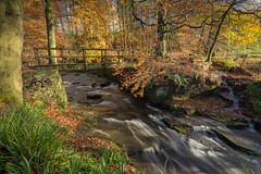 Clough Brook (JamesPicture) Tags: autumn cheshire cloughbrook mist peakdistrict wildboarclough
