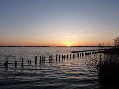 P1020330 (Momo1435) Tags: nederland groene hart alphen meije aarlanderveen ter aar