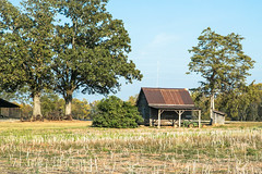 Barn shed & outhouse - Townville S.C. (DT's Photo Site - Anderson S.C.) Tags: country roads farm farming rural america vanishing landscape upstate canon 6d 24105mml