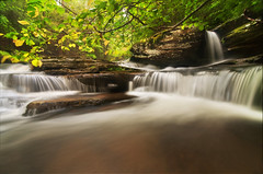 A Small Paradise (Proleshi) Tags: naturaleza green nature water leaves landscape waterfall agua scenery natural scenic naturallight tokina greenery wispy verdure josephs jamal multipleexposures longexposures 1116 111628 d300s proleshi