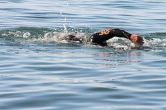 Me swimming in calm sea telephoto 300mm.  I was training for a two and a half mile sea swim. (Allan Jones Photographer) Tags: sea water swim goggles swimmer wetsuit plymouthsound seaswimming allanjones allanjonesphotographer traithlonwetsuit