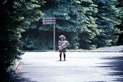 SAKURAKO - Dad! (MIKI Yoshihito. (#mikiyoshihito)) Tags: japan sapporo picnic hokkaido daughter sakurako 娘 ピクニック 平岡公園 さくらこ 櫻子 サクラコ 4歳8ヶ月