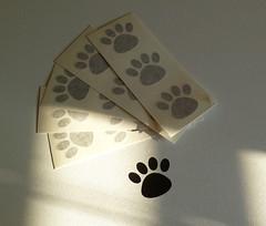 Vinyl Decal (made by mauk) Tags: dog cat print paw vinyl decals madebymauk maukrulz