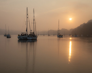 Dittisham Dawn