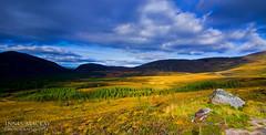 Cairngorms, Highlands, Scotland (Innes Mackay Photography) Tags: blue trees light sky mountain green grass landscape scotland highlands nikon sunny tokina filters graduated cairngorms remoteshutterrelease tokina1116mm 11mm16mm leeholder d3100