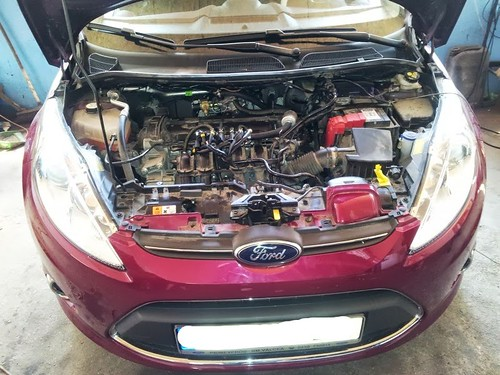 "Ford Fiesta 1.4 <a style=""margin-left:10px; font-size:0.8em;"" href=""http://www.flickr.com/photos/104493258@N06/10125796263/"" target=""_blank"">@flickr</a>"