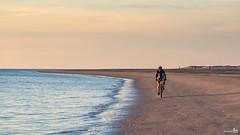 Lonely biker  on an empty beach (BraCom (Bram)) Tags: sunset sea holland bir