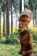 Forest Man (Donald Beaton) Tags: wood sculpture man forest canon eos wooden carved europe university republic czech forestry south brno 1750 enterprise tamron mendel moravia krtiny 450d