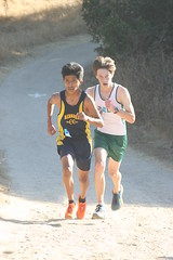Kent battles for second on the last hill (Malcolm Slaney) Tags: park highschool salinas crosscountry paloalto xc toro paly 2013 montereyinvitational