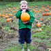 pumpkin patch 2013 6.jpg