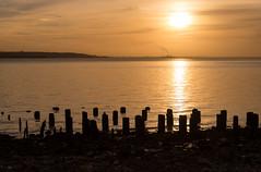 Golden Sunset over Humber (GIgaYork) Tags: bridge sunset water nikon suspension dusk yorkshire east riding hull humberbridge humber d600 riverhumber nikond600