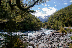 Lovely NZ Scene (Jocey K) Tags: road trees newzealand sky mountains water clouds forest river bush rocks boulders nz southisland lanscape fiordlandnationalpark milfordroadhighway southwestnewzealandworldheritagearea