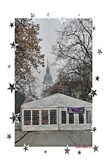 Christmas is coming I wish you all best (malioli) Tags: christmas street xmas city urban feast canon cards town holidays europe decoration croatia noel ornament card postcards tradition yuletide ornamentation boi mores amenities karlovac heritages stilloflife stillofliving