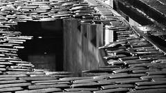 street mirror (byronv2) Tags: street new blackandwhite bw reflection water monochrome night puddle scotland town blackwhite alley edinburgh cobbles newtown nuit westend pothole edimbourg edinburghbynight randolphplace
