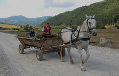 DSC_6825 (christensenbruce320) Tags: outstandingforeignphotographersvisitingromania
