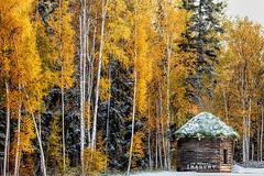0923 IMG_9373 (JRmanNn) Tags: autumn fall alaska ak fairbanks