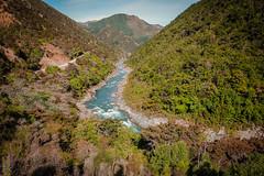 Maori Gully