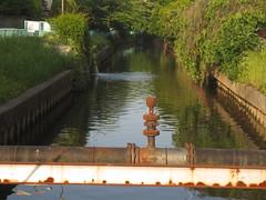 水路の風景