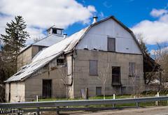 Ethel Mill.jpg (Wolfgrackle) Tags: mills gristmill ethel ontariomills maitlandriver feedmill historicmills oldmills huroncounty derelictmill ontariohistoricmills huroneasttownship