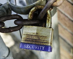 Security (that_damn_duck) Tags: chain locked chainlink padlock rusted
