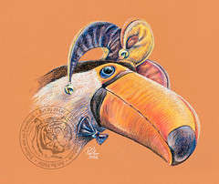 Toucan Jester (Paul-M-W) Tags: toucan bird jester art nature natural wild zoo funny humor humour drawing sketch pastel pencil conte pastelpencil