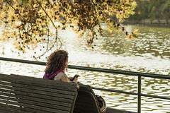 Autunno......... (Renato Pizzutti) Tags: liguria lavagna ragazza cellulare capelliricci fiumeentella panchina foglie nikond750 renatopizzutti