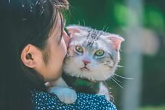 IMG_0137 (Kevin---007) Tags: couple cat pard green grass por portrait