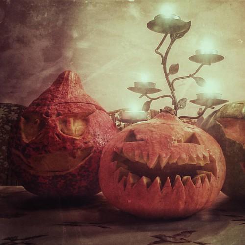 It's Halloween! #Halloween #pumpkincarving #pumpkinpatch