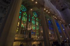 NH0A3597s (michael.soukup) Tags: barcelona sagradafamlia familia basilica church stainedglass color colorful windows nave interior gaudi churchoftheholyfamily catholicchurch artnouveau architecture neogothic spain catalonia