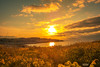 Ocean Glow (Fredrik Lindedal) Tags: sun sunset sweden sverige sky skyline stones serene sunlight glow clouds coast ocean onewithnature orange yellow blue harmony happy mindfulness skyporn nikon tripod d7200