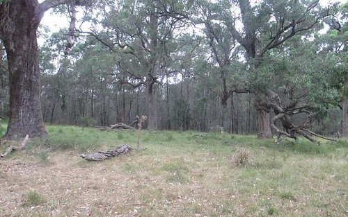 Lot 273 Yaccaba Drive, Moruya NSW