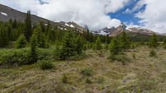 Step Into Alberta ... (Ken Krach Photography) Tags: albertacanada